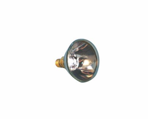 Лампа сменная Ampoule PAR 38 - 150W для подводного освещения
